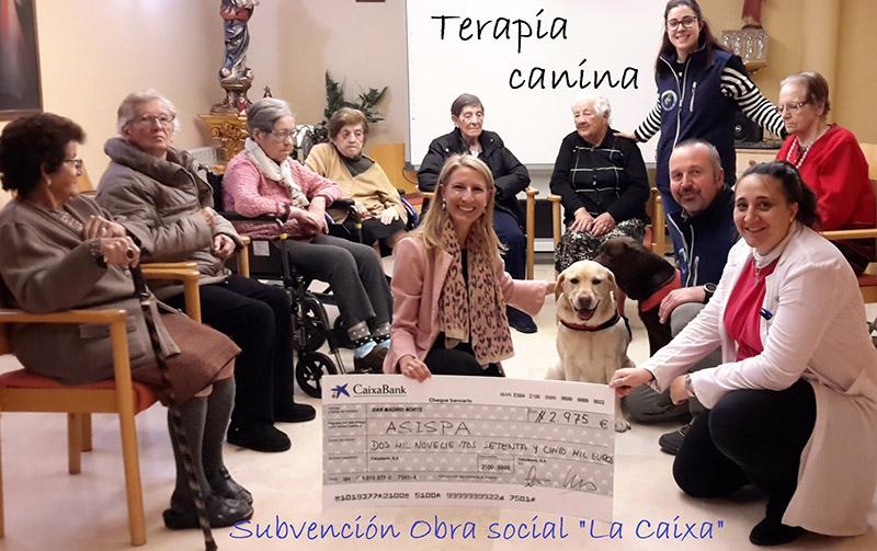 Terapia canina en la Residencia Soto Fresnos