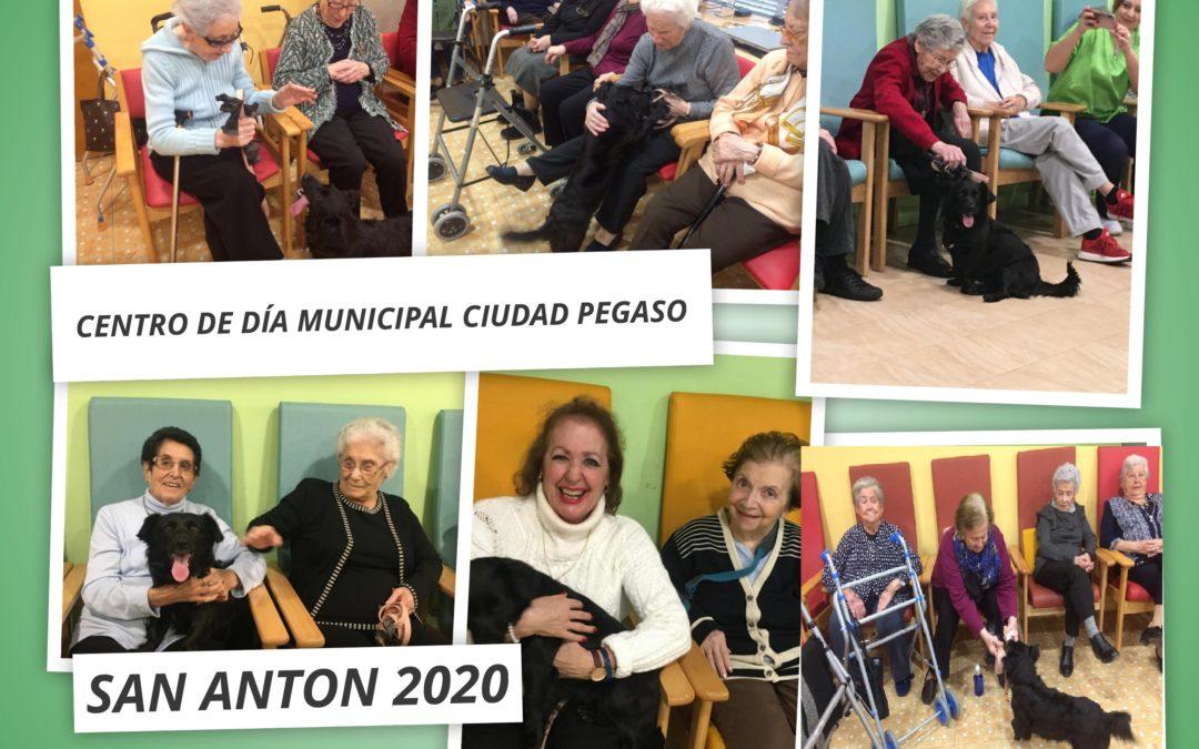 Así fue en el CDM Ciudad Pegaso la celebración del día de San Antón